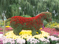 A flower horse at Yuanmingyuan (圆明园,) Beijing (北京,) China