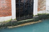 Step into the murky waters ... Venice, Italy