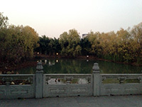 Zhejiang University's Zijingang campus: view from random old building